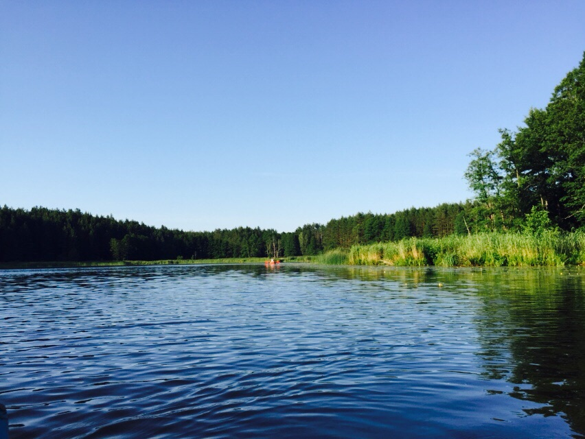 A big lake surrounded with forest on a Kayaking tour in Lithuania